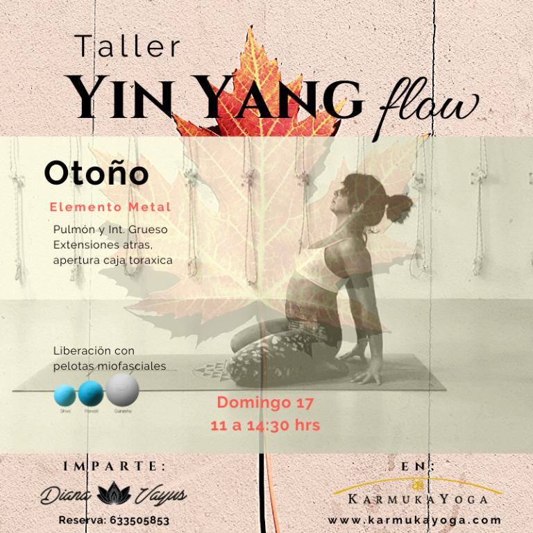 Copia de Copia de vinyasa & yin (3)